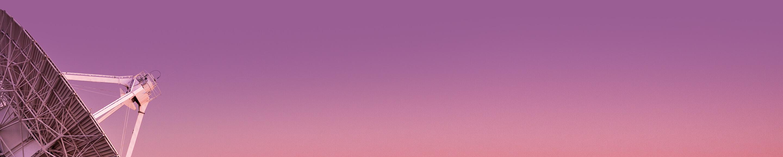 Dish Pink 9B5e94